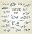 set of ornamental vintage decorations vector image