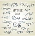 set ornamental vintage decorations vector image