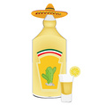 Tequila bottle and shot vector image