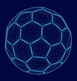 wireframe of the soccer ball of the blue lines vector image
