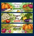 healthy green vegetables veggie farm shop vector image vector image