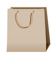 shopping paper brown bag isolated on white vector image