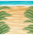 top view sea sand beach with coconut tree leaf vector image
