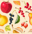 vintage seamless pattern with apples and berries vector image