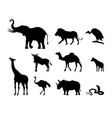 silhouettes of african animals nature of africa vector image