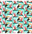 bird paradise floweris exotic flowers vector image vector image