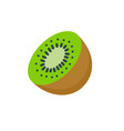 kiwi fruit icon half vector image