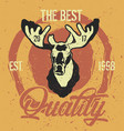 moose head label vector image
