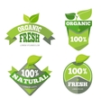 Natural green organic eco labels set vector image vector image