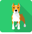 dog American Staffordshire Terrier standing icon f