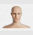 3d human model with face female or male head vector image