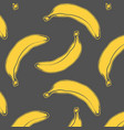 banana fruit vector image vector image