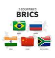 brics association 5 countries folder flag vector image