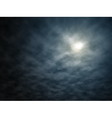 Night moon vector image vector image
