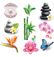 Set of SPA symbols vector image vector image