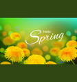 stock hello hi spring vector image vector image