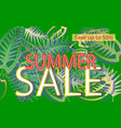 summer sale a banner with leaf patterns on a vector image