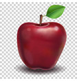 red apple realistic vector image