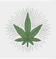 cannabis leaf print vector image vector image