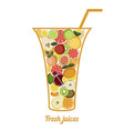 Fresh juice or cocktail concept vector image vector image