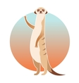 Greeting cartoon meerkat vector image vector image