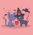 halloween cat cartoons vector image