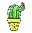home cactus icon houseplant for decorative vector image vector image