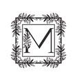 letter m alphabet with vintage style frame
