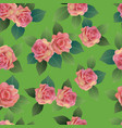 seamless spring background with roses pink vector image vector image