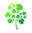 shamrock concept clover vector image vector image