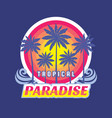 tropical paradise - concept vector image vector image