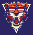 cool tiger mascot vector image