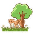 isolated picture tiger in garden vector image vector image