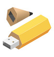 pen usb flash icon isometric style vector image vector image