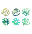 set of watercolor succulents with a top view on a vector image vector image