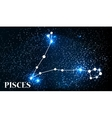 Symbol Pisces Zodiac Sign vector image vector image