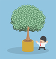 Tree growth from money coin vector image