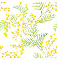 watercolor mimosa pattern vector image vector image