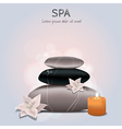 colorful of spa with flowers candle and sto vector image