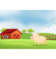 A pig in the farm with a wooden house at the back vector image vector image