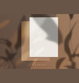 branding mockup a shadow and sunny bunnies on top vector image