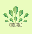 corn salad leaf vegetable cartoon icon with light vector image vector image
