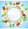 Floral decorative card with white chamomiles vector image vector image