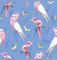 pink galahs and yellow eucalyptus blossom seamless vector image