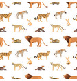 seamless pattern with african and american animals vector image