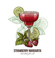 strawberry margarita cocktail with berries vector image vector image