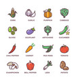 vegetables vegan raw food colored icons set vector image vector image