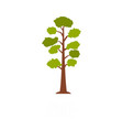 pine tree icon flat style vector image