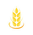 agriculture wheat logo template icon deign vector image vector image