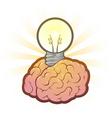 brain light bulb vector image vector image